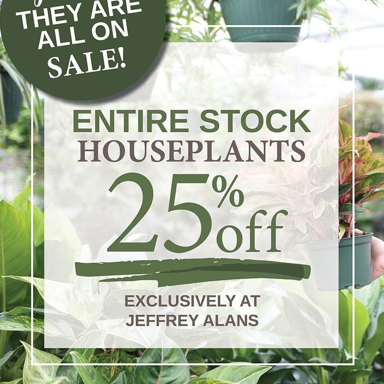 JA Houseplant Sale